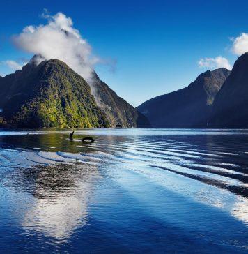 New Zealand, Nea Zinlandia, Νεα Ζιλανδία